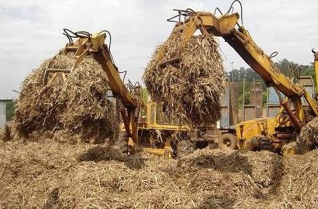 biomassa-etanol 2g