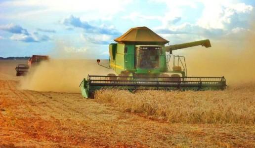 Dourados fechou a safra 2015/2016 como o quarto maior produtor de soja de MS