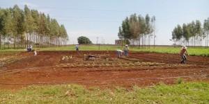 Com o Tecnofam Embrapa leva ciência e tecnologia para agricultores familiares