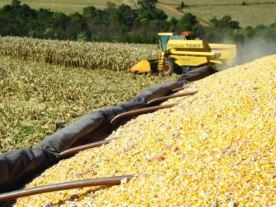 Prognóstico do Rally da Safra aponta para uma redução na produtividade do milho safrinha em virtude de adversidades climáticas