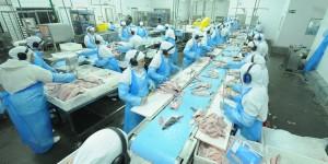 50% das indústrias operam abaixo da capacidade de produção em MS