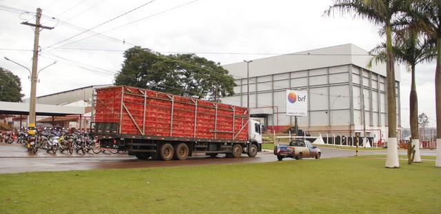 Grupo pretender dobrar a capacidade de produção no município nos próximos meses - foto: Arquivo