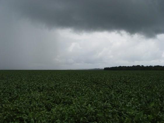 chuva-plantacao-soja