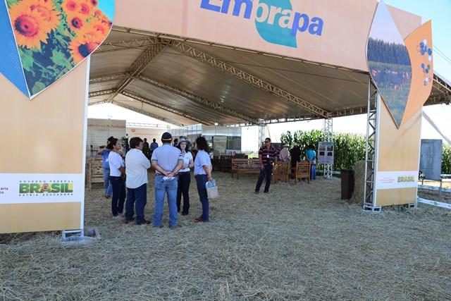 O evento, considerado a vitrine tecnológica do agronegócio sul-mato-grossense, acontece nos dias 17 a 19 de janeiro de 2018, na Estação Experimentação da Fundação MS, em Maracaju. (Foto: Divulgação).