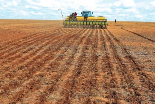 Produtores rurais, acadêmicos e profissionais da área terão acesso a opções práticas para execução de um Plantio Direto feito com qualidade, principalmente no que diz respeito a rotação de culturas. (Foto: Divulgação).
