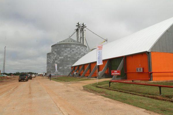 Pelo menos um milhão de toneladas de soja de MS devem ser exportadas para a Argentina pelo Porto de Concepción