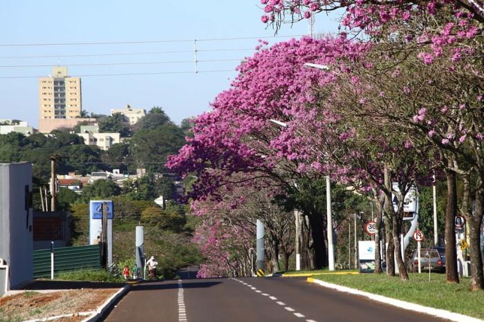 Análise da Fundtur-MS revela que Dourados já tem no turismo uma de suas principais atividades econômicas. (Foto – A. Frota).