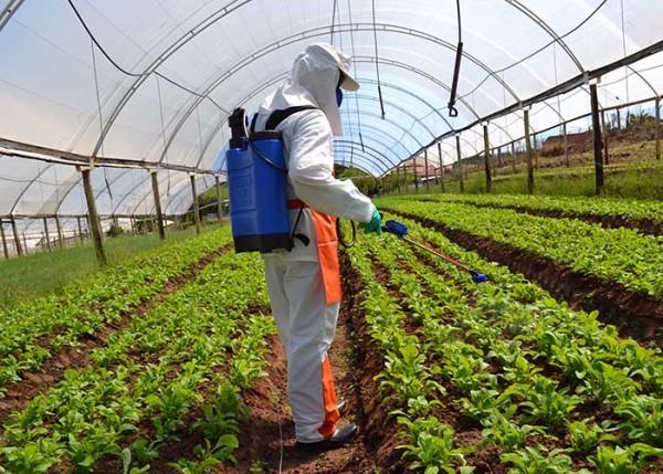 Equipamento permite que pequenos agricultores se beneficiem da pulverização elestrostática - Foto: Divulgação.