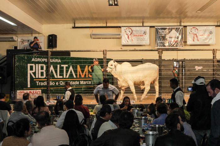 Ribalta, Ricardo Carvalho Filho, até o momento, este é considerado o melhor leilão do país. (Foto: Divulgação).