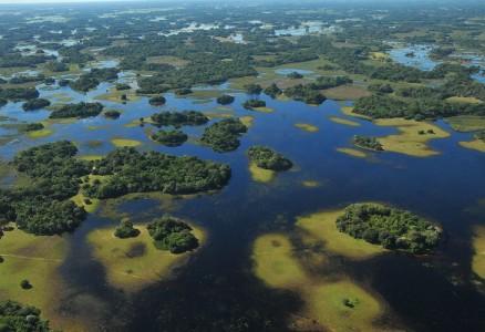 Bioma perdeu 849.897,12 hectares de sua vegetação nativa em 32 anos