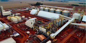 Em Dourados, Coamo inaugura uma das maiores esmagadoras de grãos do país