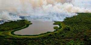 Governo do MS e União estudam ajuda financeira para produtores no Pantanal